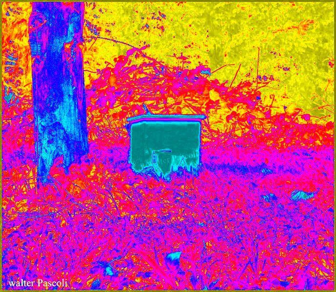 cabane rouge, photo